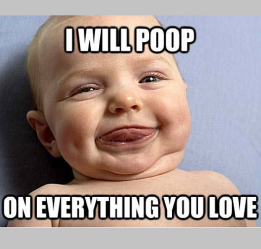 funny baby pooping memes