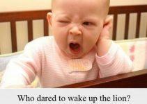 Sleeping Baby Memes