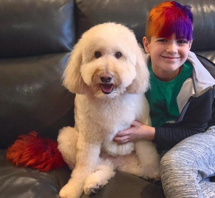 boy's hair color
